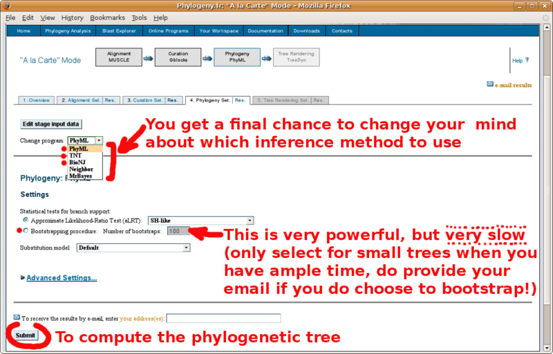 File:Phylogeny fr tutorial 7.png